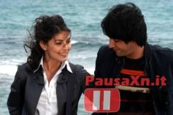 I Cesaroni: Una Petizione dei Fan per Marco ed Eva